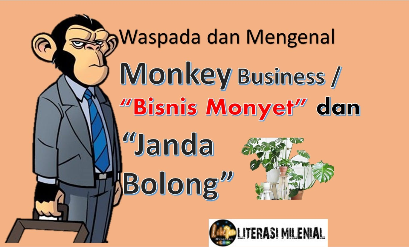 Monkey Business dan Janda Bolong